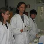Alla ricerca di bioetanolo nei pioppi