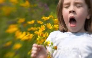 Arrivano le allergie di stagione