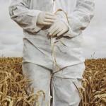 IL FRIULI VENEZIA GIULIA ESEMPIO NAZIONALE SUGLI OGM