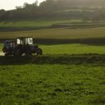 AGRICOLTURA:SIMPOSIO INTERNAZIONALE A UDINE