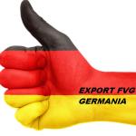 EXPORT VERSO GERMANIA:SEMINARIO A PORDENONE