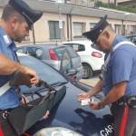 ANZIANO UCCIDE GATTO A FUCILATE PERCHE' ERA ENTRATO IN GIARDINO