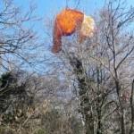 VICENZA:  TREECLIMBING DEL SOCCORSO ALPINO PER SALVARE DUE PILOTI DI PARAPENDIO