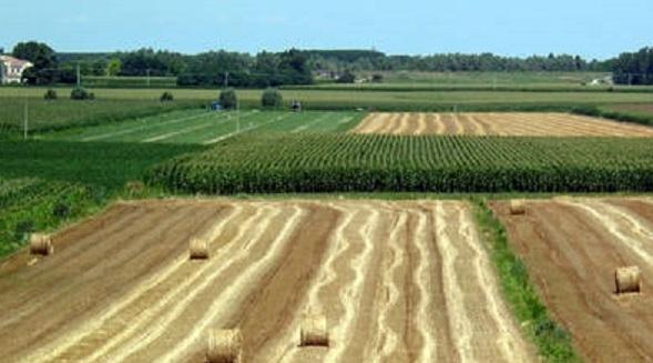 AGRICOLTURA: PIANO SVILUPPO RURALE, 18 MILA DOMANDE FINANZIATE IN VENETO