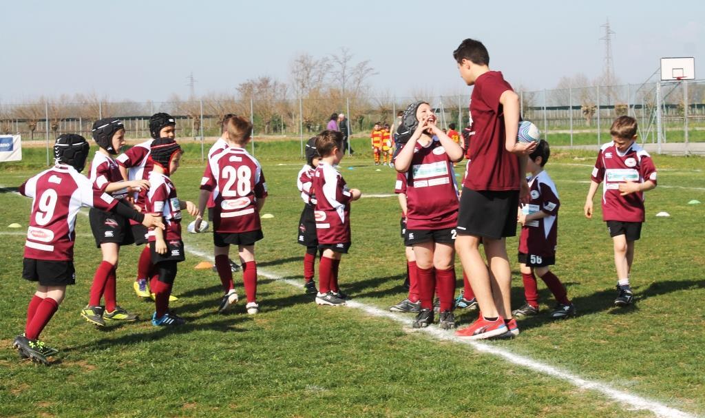 ern mini rugby IMG_1525