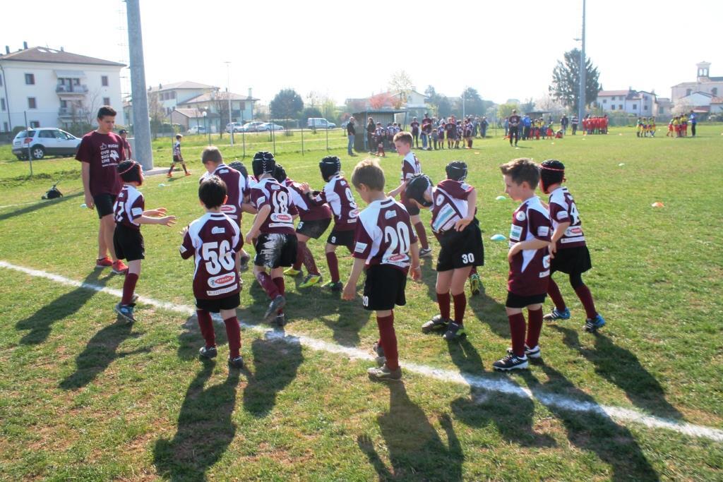 ern mini rugby IMG_1548