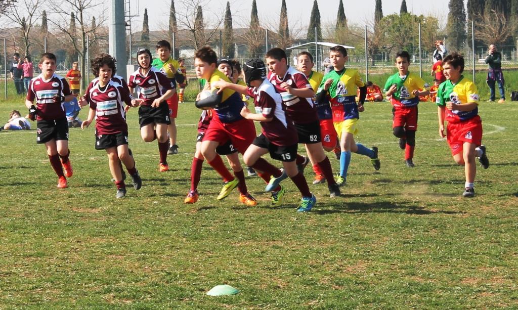 ern mini rugby IMG_1572