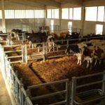 AGRICOLTURA A TUTTO TONDO: CICLO DI CONFERENZE. LA PRIMA AD AGRIEST