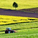AGRICOLTURA: L'AMBIENTE SI PROTEGGE CON LO SVILUPPO