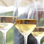 Collio e Brda: territorio di-vino
