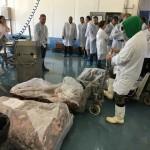 PROGETTO NICOSIA IN LIBIA: APPREZZAMENTI EUROPEI PER IMPEGNO FVG